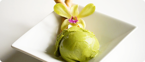 Koyu Matcha Tea » White Chocolate Ice Cream